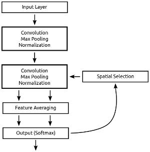 Attention in a Convolutional Neural Net - Dan Vatterott